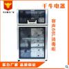 礼品立式 双门 商用消毒碗柜 家用电器高温消毒柜