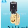 厂家供应 先导膜片式电磁阀 常开电磁阀 YCB22 先导电磁阀定做