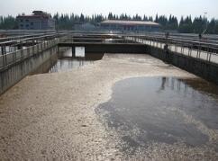 上海石洞口污水处理厂污泥处理完善工程现有污泥系统改造设备集成项目设备现场拼装成套、设备利旧维护复原及项目伴随服务招标公告