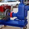 100ZWC100-15柴油机式自吸排污泵/自吸柴油机泵/移动式柴油机泵