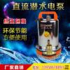 48V电动车电瓶直流12V24V48V60V72V微型潜水泵船用潜水泵 1寸2寸