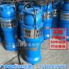 现货喷泉专用潜水泵QS100-12-5.5