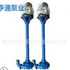 2寸3寸4寸立杆污NWL杆泵 高扬程液下排污泵 抽粪油田无堵塞抽油泵