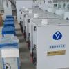 全自动电解法次氯酸钠发生器生产厂家 咨询玉洁环保 品质保证