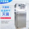 供应立方低温臭氧灭菌空间消毒柜 食品厂制药厂消毒臭氧灭菌柜