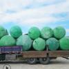 农村旱厕改造化粪池玻璃钢化粪池 玻璃钢模压化粪池 污水处理设备