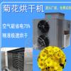 野菊花烘干机 空气能烘干箱房 花茶热泵干燥机 省电75% 提供试烘