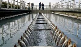 总投资2.5亿!河北阳原经济开发区循环园污水处理厂及基础设施项目(二次)废标