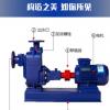 自吸无堵塞排污泵ZW300-800-20不锈钢耐腐蚀排污泵大流量污水泵