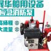 船用CWY系列柴油机应急消防泵 电动立式单级 移动式船用消防泵