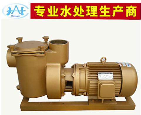 出售 BP5050游泳池过滤铜泵 循环过滤水泵 泳池设备 水处理设备