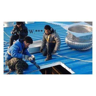A(旋鼎800型市场价)无动力排气扇屋顶自动抽风机旋转式烟道风帽【质量可靠】 风能设备