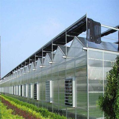 山东抗风能力强的阳光板温室建造 齐阳智能连栋温室建设商
