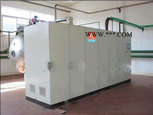 徐州天蓝厂家生产3kg/h 废水处理臭氧发生器,臭氧机批发