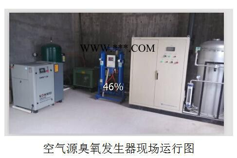废水处理,水杀菌消毒设备,脱色,消毒灭菌,臭氧设备,臭氧氧化技术 水杀菌消毒设备