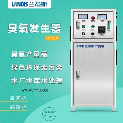 反渗透专用-臭氧设备LCF-GA-40 净水灭藻 水厂消毒 超滤必备